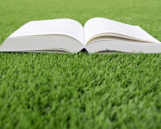 Book Open on a Grass Lawn