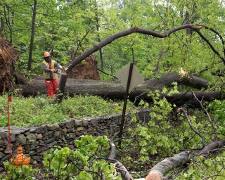 Crews working on Removing Downed Trees after a storm
