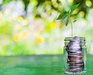 Image of coins in a jar with a plant growing from the coins