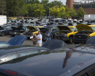 View of a parking lot full of state surplus vehicles ready for public auction.