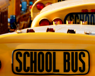Close-up of school buses