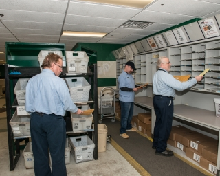Workers sorting mail in the OGS mailroom.