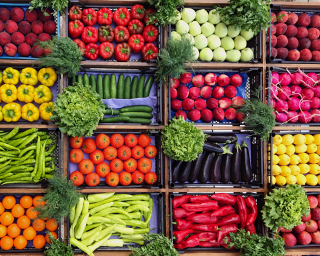 Colorful array of fresh vegetables in a grid layout.